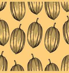 engraved pattern of cocoa beans vector image vector image
