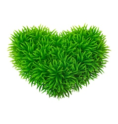 Grassy heart vector image vector image