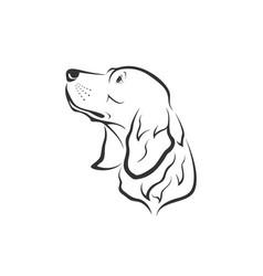 Dog head designgolden retriever vector