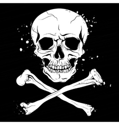 Pirate black flag with skull and crossbones vector
