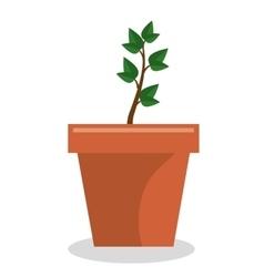 Plant pot garden isolated icon vector