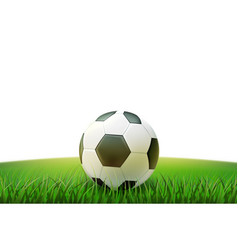 realistic footbal soccer ball stadium grass vector image