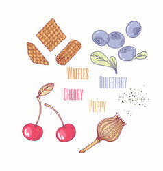 Sweet toppings blueberry cherry and poppy vector