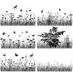 Collection of plants vector image