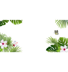 banner tropical plants and butterfly vector image