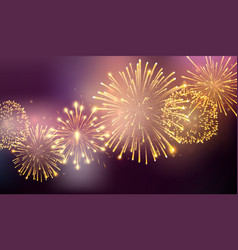 fireworks bursting in various shapes firework vector image