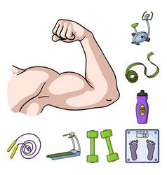 fitness and attributes cartoon icons in set vector image