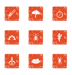 Forest dweller icons set grunge style vector