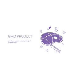 gmo product food and health care concept template vector image