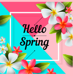 hello spring background with colorful flowers vector image