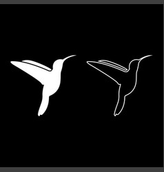 hummingbird icon set white color flat style vector image