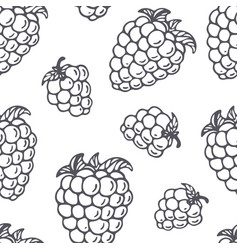 outline seamless pattern with blackberry vector image