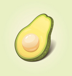 realistic fresh avocado fruit vector image