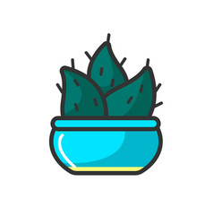 small cactus in blue pot vector image