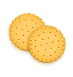 Two delicious round biscuit vector