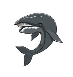 Whale or cachalot isolated mascot icon vector image vector image
