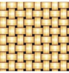 Rattan Seamless Texture vector image
