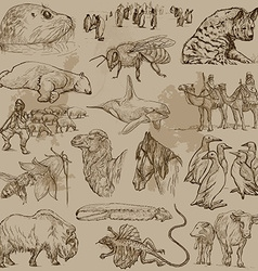 Animals - Hand drawn pack vector