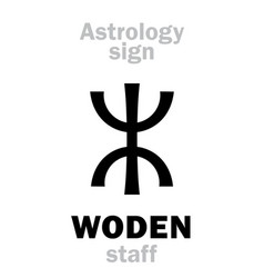 astrology woden staff vector image