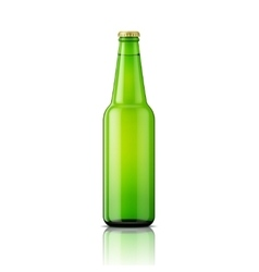 Green beer bottle template vector