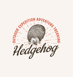 hedgehog badge spiny forest wild animal label or vector image
