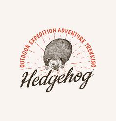 hedgehog badge spiny forest wild animal label vector image