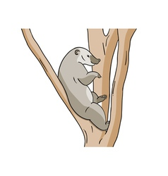 Small animal on the branch vector