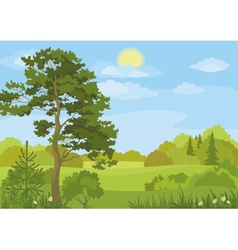 Summer landscape with trees and sky vector
