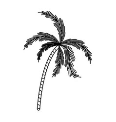 black silhouette with palm tree vector image