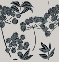 seamless pattern with hand drawn stylized angelica vector image