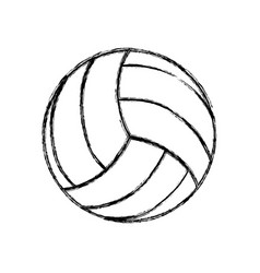 voleyball ball isolated vector image