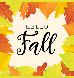 hello fall banner template with bright leaves vector image