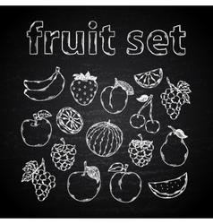 Fruit set on a chalk board vector image