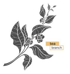 Tea branch silhouette vector