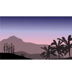 Banana tree in hill scenery vector image vector image