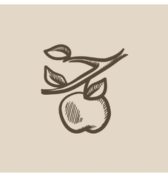 Apple harvest sketch icon vector