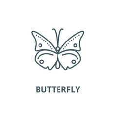 butterfly line icon butterfly outline vector image