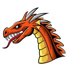 cartoon angry dragon head mascot vector image