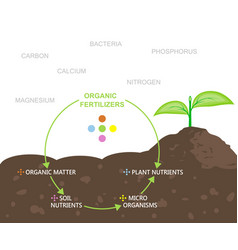 Diagram of nutrients in organic fertilizers vector