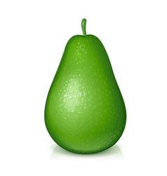 ripe juicy green avocado vector image