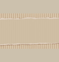sheet of torn cardboard vector image