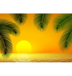 Sunset sea and palm branch vector image vector image