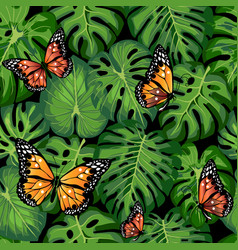 Tropical leaves and butterflies vector