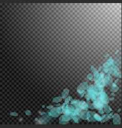 turquoise flower petals falling down vector image
