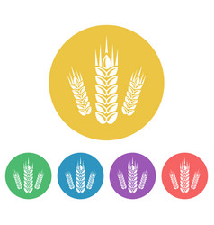 wheat set colored round icons vector image