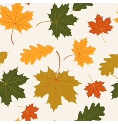 seamless with autumn maple and oak leaves vector image