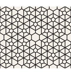 Seamless Black and White Lace Pattern vector image