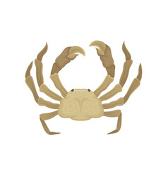 flat icon of crab with big claws sea vector image