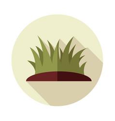 Grass flat icon vector