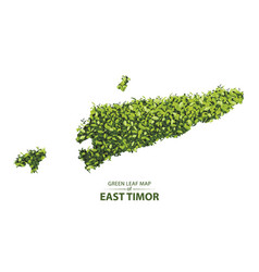 Green leaf map of east timor of a vector